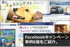 【事例紹介】ここ最近のFacebookキャンペーン事例8選をご紹介 / HUB・沖縄Likes・トヨタドッグサークルなど。
